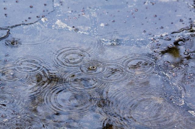 pluie qui tombe